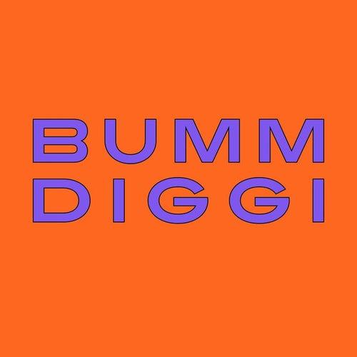 Bumm Diggi by Mc Fitti