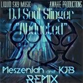 Abducted (Meszenjah and Kjb Remix) de DJ Soul Slinger