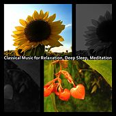 Classical Music for Relaxation, Deep Sleep, Meditation by Hamasaki