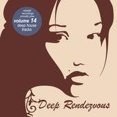 Deep Rendevouz, Vol. 14 by Various Artists