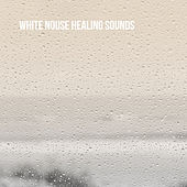 White Nouse Healing Sounds by Various Artists