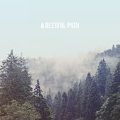 A Restful Path by Various Artists