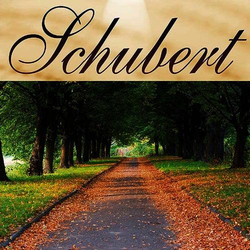 Musica Clasica - Franz Schubert by Franz Schubert