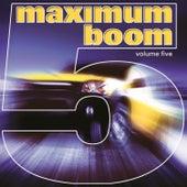 Maximum Boom for Your System, Vol. 5 de Various Artists