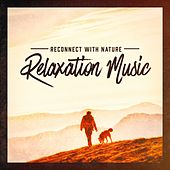 Reconnect With Nature Relaxation Music de Various Artists