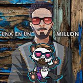 Una en un Millon by Fer Palacio