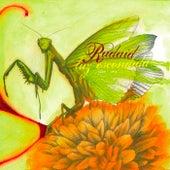 Luz Escondida by Radaid