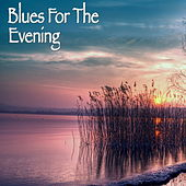 Blues For The Evening de Various Artists