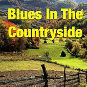 Blues In The Countryside by Various Artists