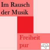 Im Rausch der Musik - Freiheit pur by Various Artists