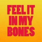 Feel It in My Bones by Various Artists