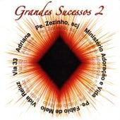 Grandes Sucessos, Vol. 2 de Various Artists
