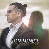 Seguir Viviendo Sin Tu Amor de Juan Manuel