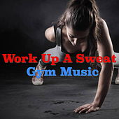 Work Up A Sweat: Gym Music de Various Artists