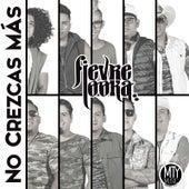 No Crezcas Mas by Fievre Looka