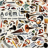 These Are Your Friends by Adem