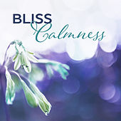 Bliss Calmness – Anti-Stress Music Therapy, Relaxation, Rest, Zen, Harmony Life, Nature Sounds by Echoes of Nature