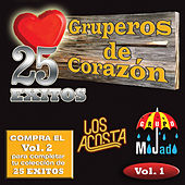 25 Exitos Vol. 1 by Various Artists