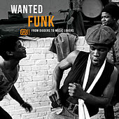 Wanted Funk: From Diggers to Music Lovers by Various Artists