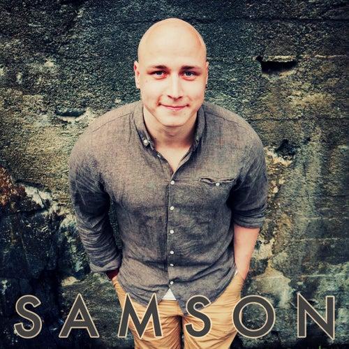 Saanko Mä Tykkää Sust Näin Sikana by Samson