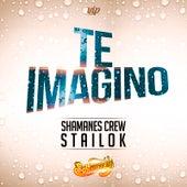 Te Imagino (feat. Stailok) by Shamanes Crew