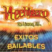 Exitos Bailables by Hechizero De Linares