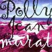 Polly Jean de Jean-Louis Murat