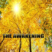 The Awakening by Various Artists