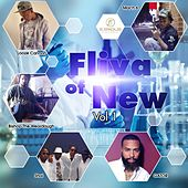 Fliva of New, Vol. 1 de Various Artists