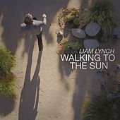 Walking to the Sun by Liam Lynch