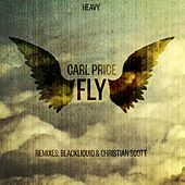 Fly by Carl Price