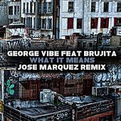 What It Means (feat. Brujita) by George Vibe