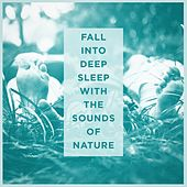 Fall Into Deep Sleep With the Sounds of Nature de Various Artists
