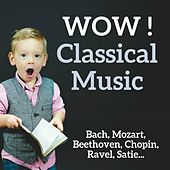 WOW ! Classical Music by Various Artists
