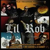The Best of Lil Rob, Vol. 1 de Lil Rob