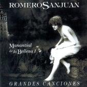 Manantial De la Belleza de Romero Sanjuan