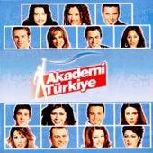 Akademi Türkiye by Various Artists