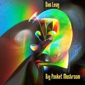 Big Pocket Mushroom de Dan Levy