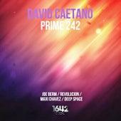 Prime 242 de David Caetano
