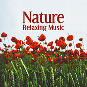 Nature Relaxing Music – Nature Sounds to Relax, Mind Rest with New Age Music, Sweet Memories by Echoes of Nature