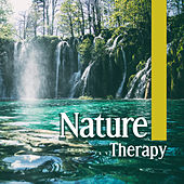 Nature Therapy – Relaxing Sounds of Nature, Deep Relaxation, Rest, Relief Stress, Zen, Happiness by Nature Sound Series