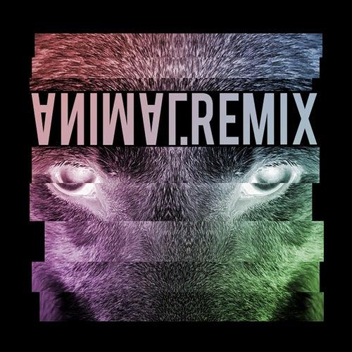 Animal (Remix) von BOY