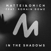 In the Shadows de Mattei