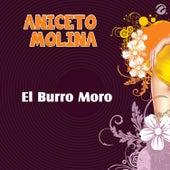 El Burro Moro - Single by Aniceto Molina