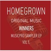 Homegrown Vol 1. de Various Artists