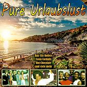 Pure Urlaubslust by Various Artists