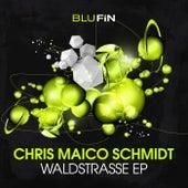 Waldstrasse EP von Chris Maico Schmidt