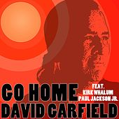Go Home by David Garfield