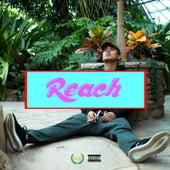 Reach de Camilo