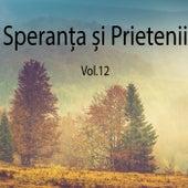 Vol. 12 by Speranța și prietenii